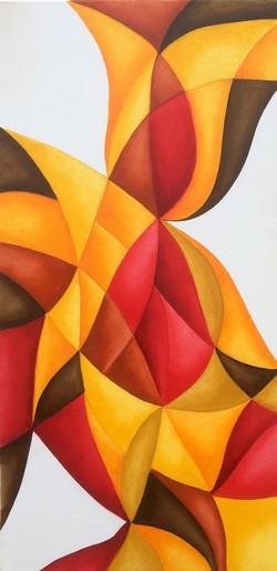 Multicolor28-40x80