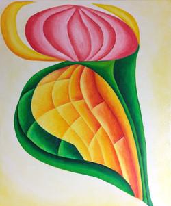Multicolor10-46x55
