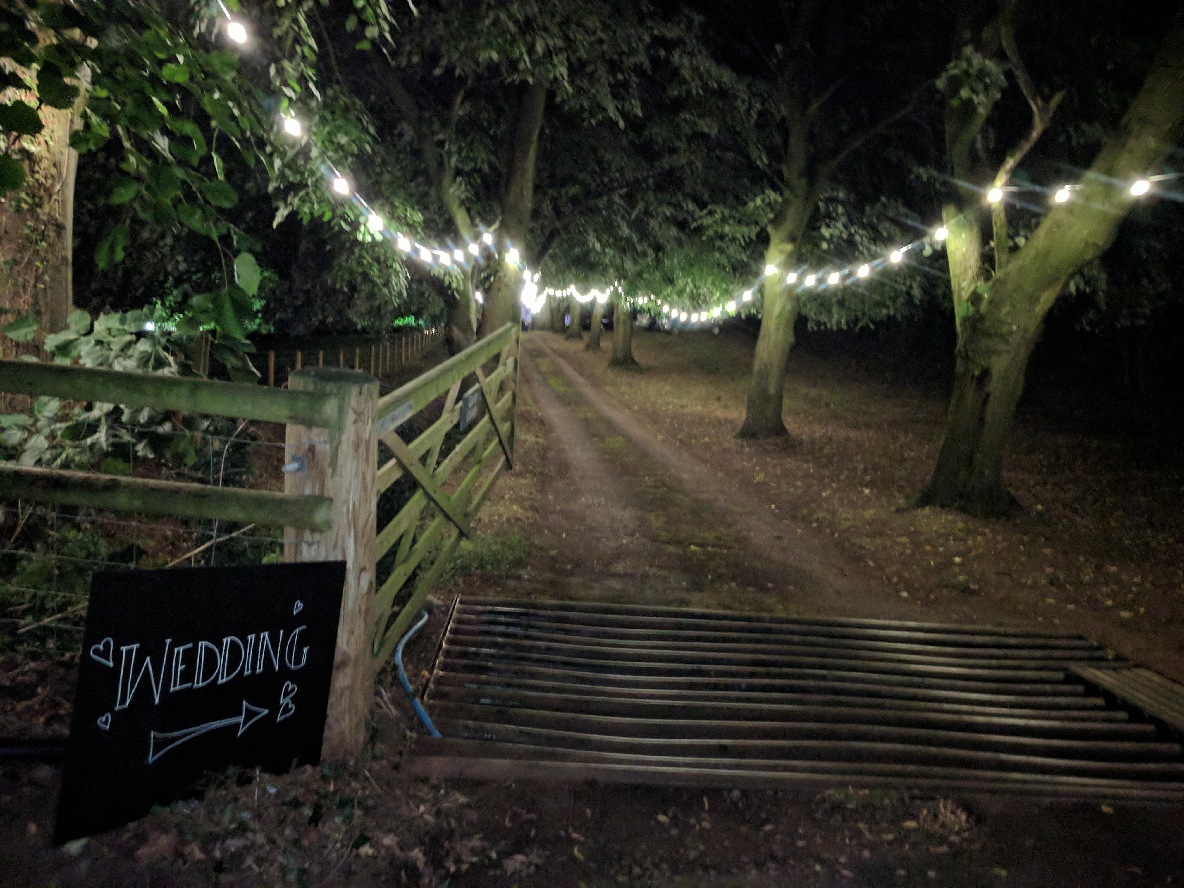 Festoon Lighting @ Wedding in Herefordshire