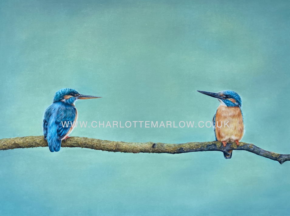 'Queen and Kingfisher'