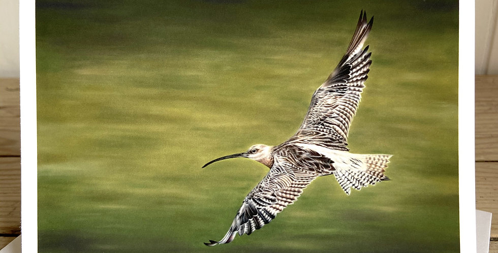 'Curlew over Balquhandy' Greeting Card