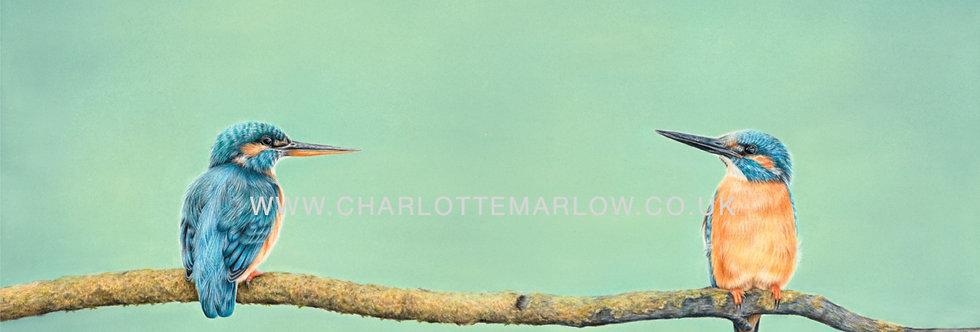 'Queen and Kingfisher' Limited Edition Print