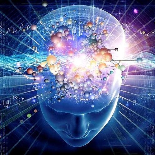 Mieux apprendre avec les neurosciences