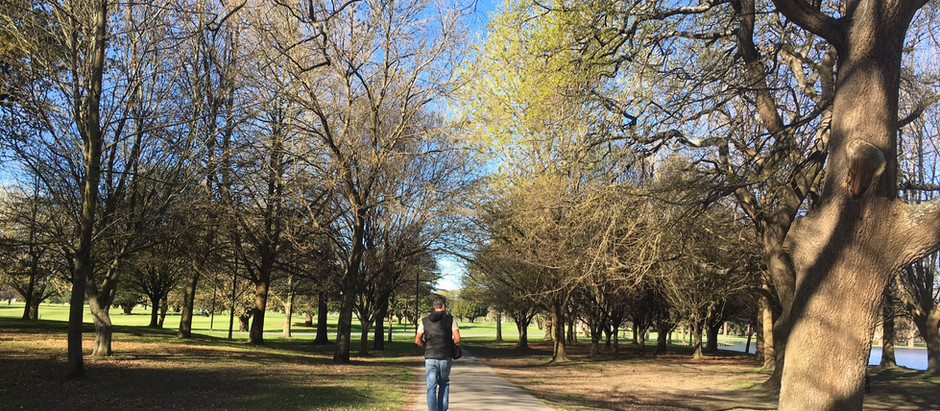 Christchurch Second Impressions