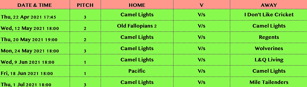 CamelLights_Stage1_fixtures.png