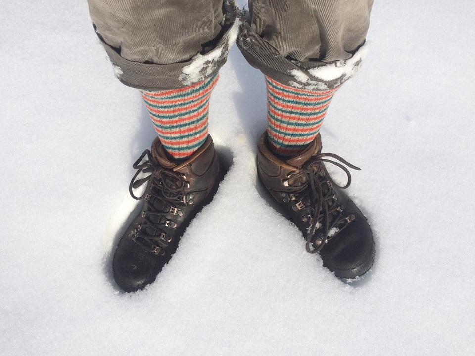 Barb neige 1