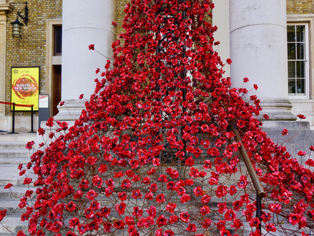 #PoppiesTour: We Will Remember Them