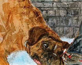 Boxer dog painting acrylic texture
