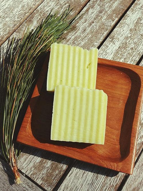 Tea Tree Oil + Shea Butter Soap Bar