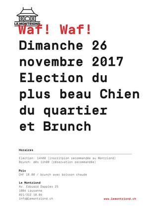 Dimanche 26 novembre 2017 -                    Election du plus beau Chien du quartier + Brunch