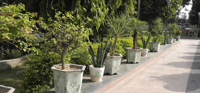 mission green pots35.jpg