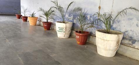 mission green pots 48.jpg