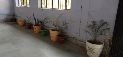 mission green pots47.jpg