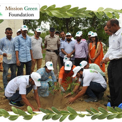 mission green planting