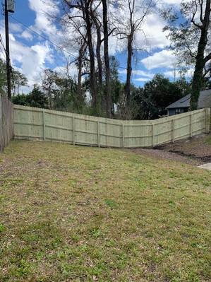 New Fence (back)