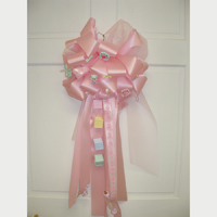Baby Bow $30.00 & up