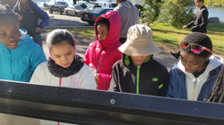 Students analyzing maps at the Georgetown Waterfront