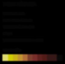 FICHATECNICA_BLACKBIRD.png