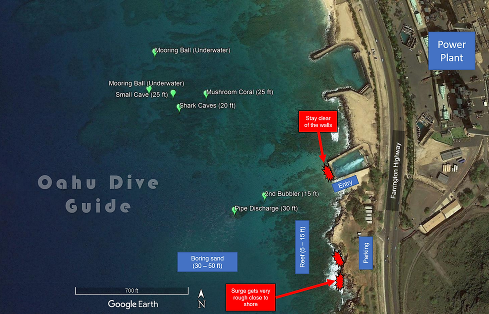 Electric Beach Scuba Dive Guide