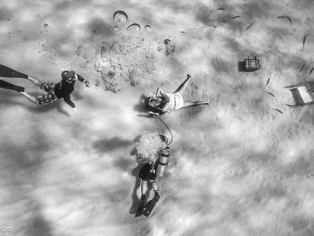 Underwater Photoshoot!