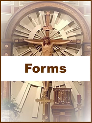 Forms Icon.png