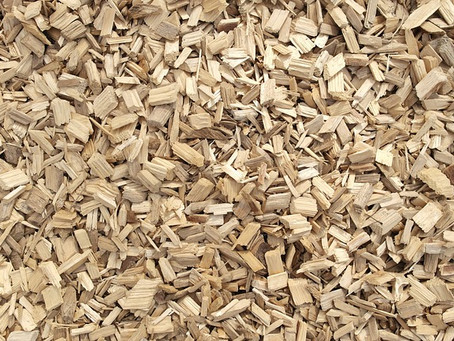 Peat Free Gardening (3)