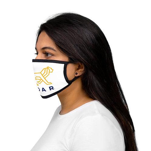 Mixed-Fabric Face Mask
