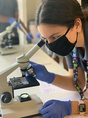 Biology - Arly .jpg