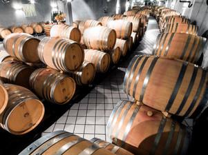 Barriques-Keller Weingut Donatsch