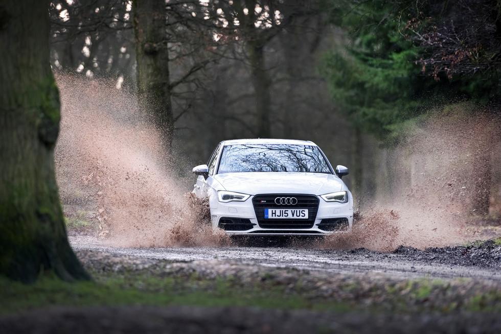 Audi S3 Forest.jpg