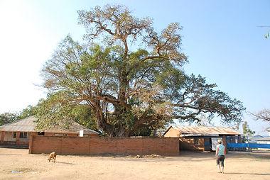 Malawian Tour - Nkhotakota