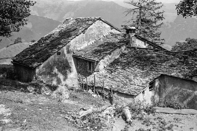 Veduta sui tetti del nucleo di Pianspessa, 1963