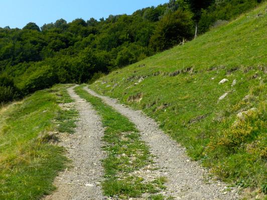 Strada che conduce al nucleo di Pianspessa.