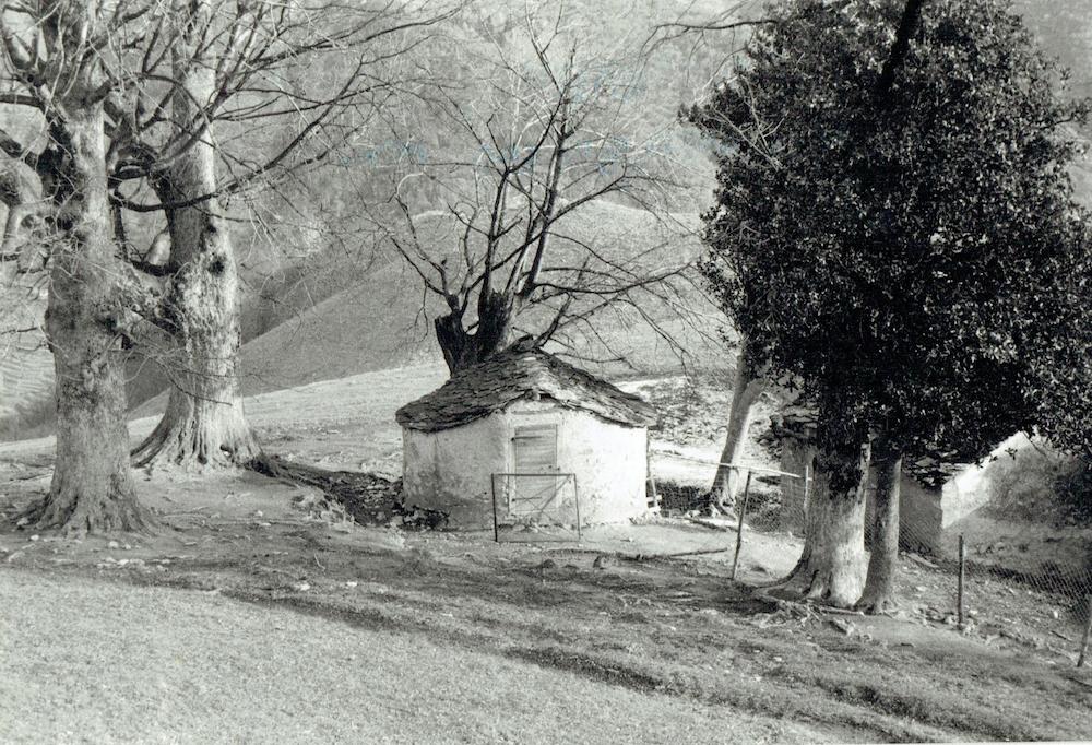 La nevèra circondata da una corona di alberi (anni '70).