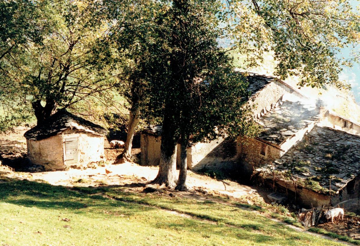 Vista sui tetti del nucleo di Pianspessa (anni '80).