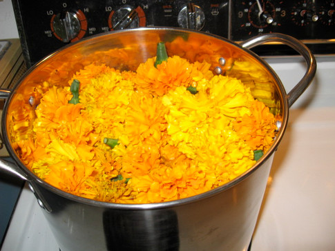 Marigold Flowers are Made Into Dye