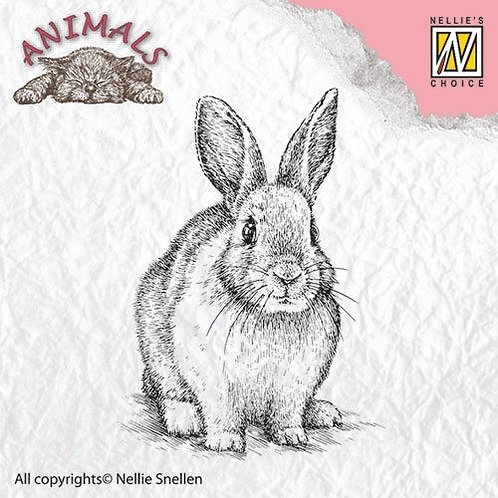 Clear Stamp Hase 4x6,5cm