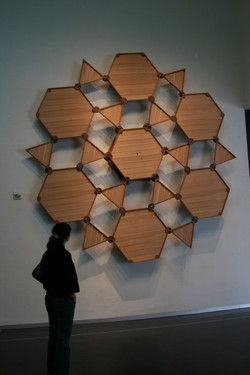 Hexagonal Mosaic Transformation