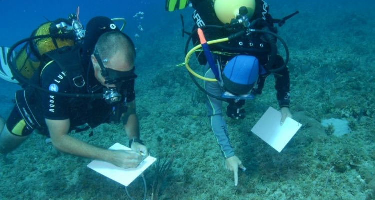 scuba divers with tablets.jpg