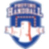 provins handball club.jpg