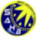 senart agglomeration handball.jpg
