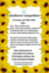 sunflower comp - Made with PosterMyWall.