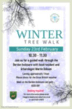 winter tree walk.jpg