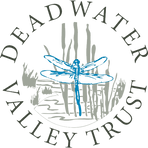 DVT-logo-extract-colour.png