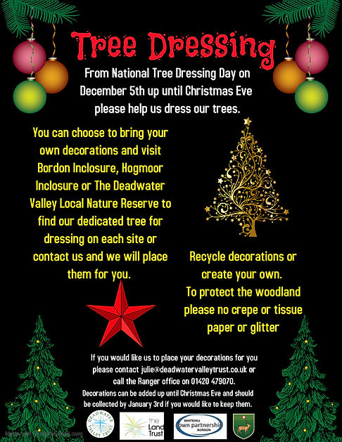 Tree Dressing poster.jpg