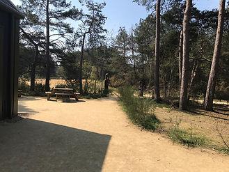 pathway next to cafe.jpg