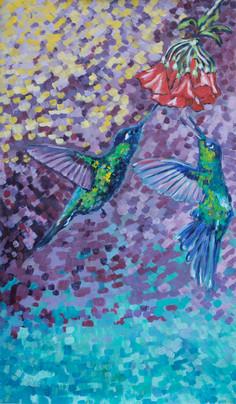 kolibri2longsmall.jpg