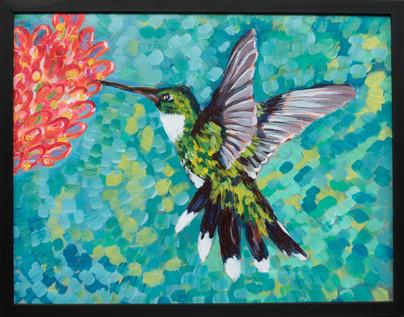 kolibrigreensmall.jpg
