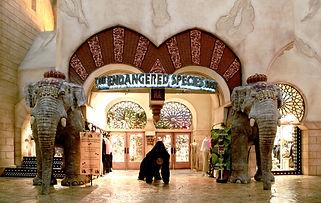 Endangered Species store Las Vegas