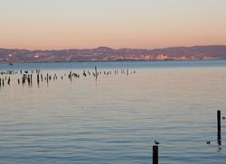 Mission Rock Resort San Francisco